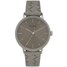 Aster Grey Watch